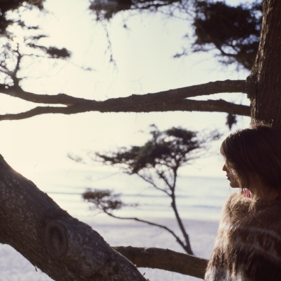 sam :: carmel-by-the-sea :: 2013 :: ektachrome