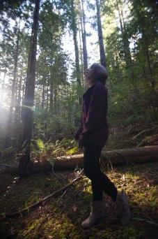 mendocino redwoods-129